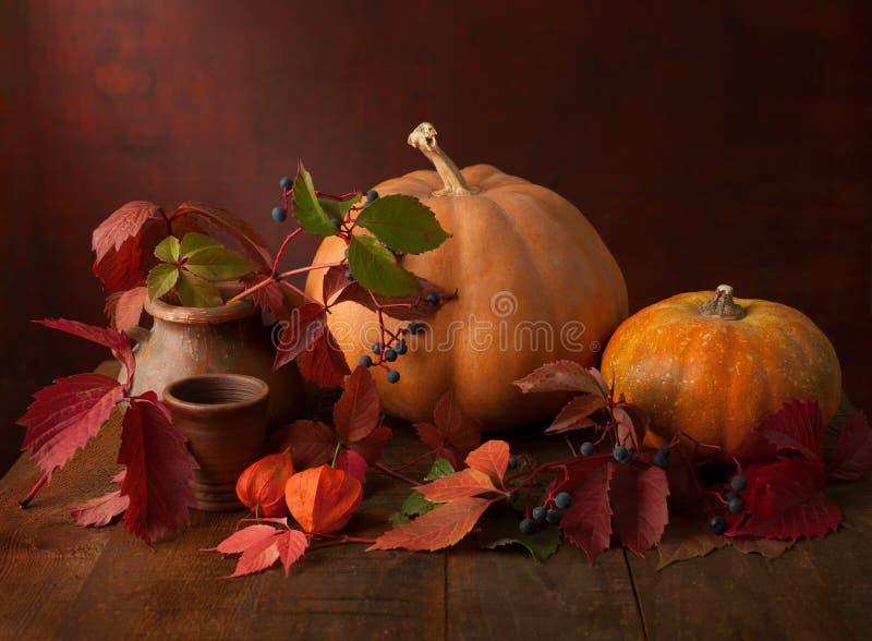 De herfstbladeren, wilde bessen, physalis en pompoenen royalty-vrije stock foto's
