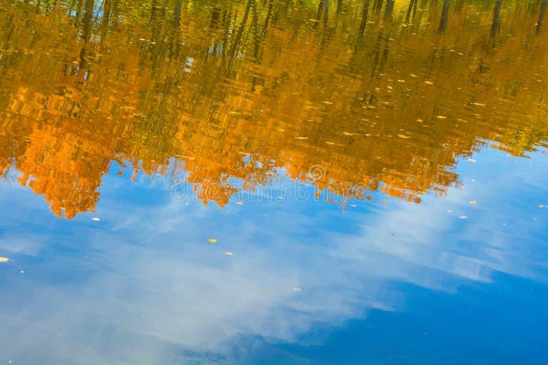 De de herfstbomen met gouden bladeren dachten in het duidelijke water van het meer na royalty-vrije stock afbeeldingen
