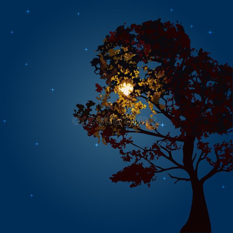 De herfstboom op een maannacht als achtergrond en de sterrige hemel vector illustratie