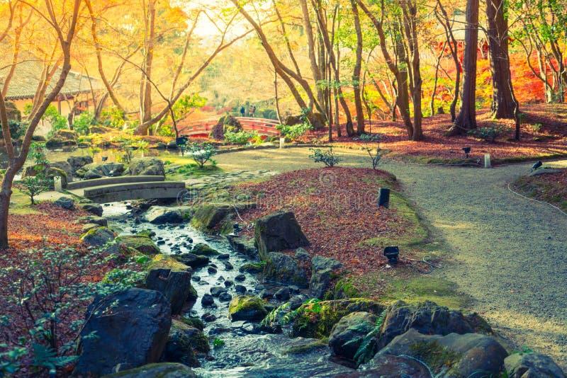 De herfstbos met rivier (Gefiltreerde beeld verwerkte wijnoogst) stock foto