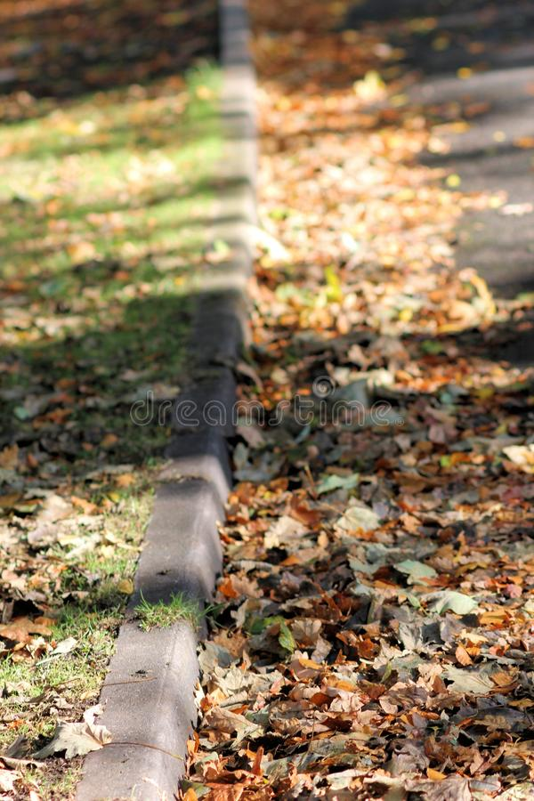 De herfstcurbside stock foto