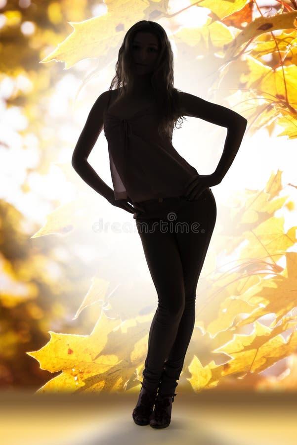 De herfstdame over gouden bladerenachtergrond stock foto