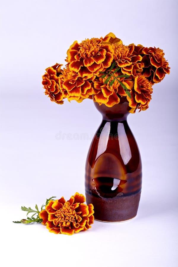 De herfstdecoratie royalty-vrije stock foto's