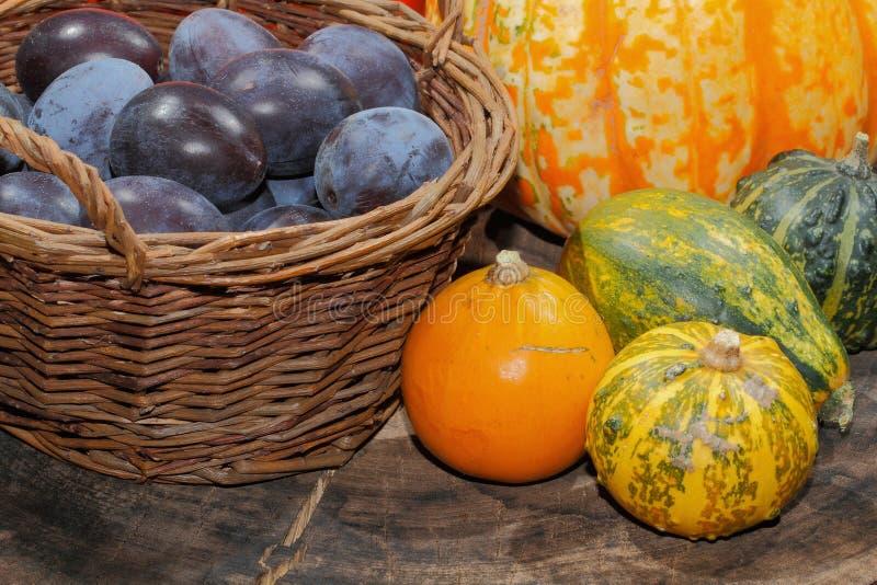 De herfstdecoratie, pompoen, pompoen, pruimen royalty-vrije stock fotografie