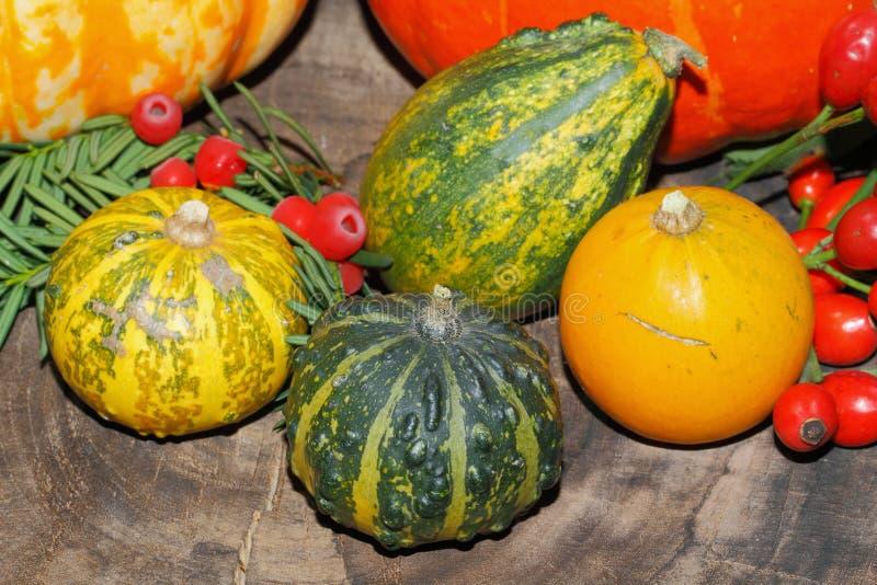 De herfstdecoratie, pompoen, pompoen, rozebottels, bessen royalty-vrije stock foto's