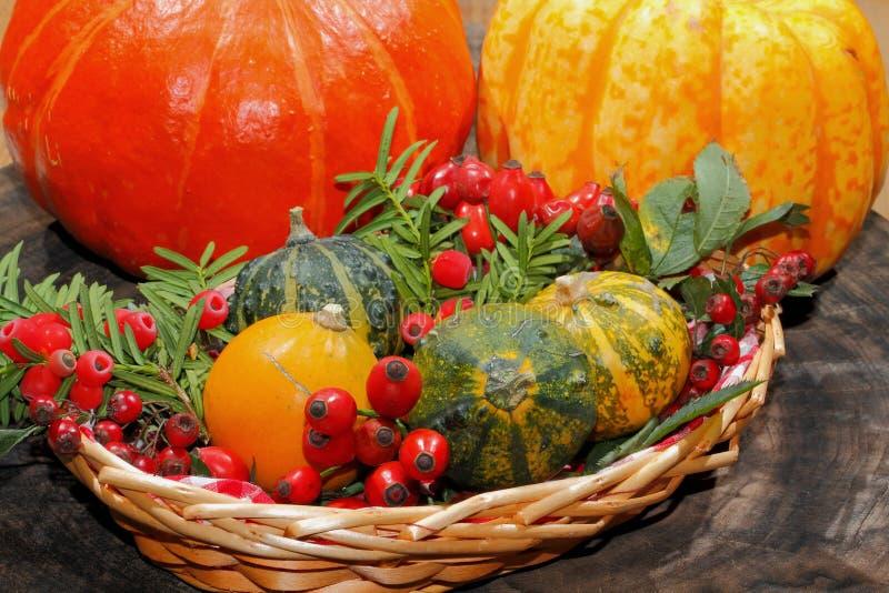 De herfstdecoratie, pompoen, pompoen, rozebottels, bessen royalty-vrije stock afbeeldingen