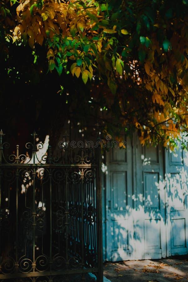 De herfstdeur stock afbeelding