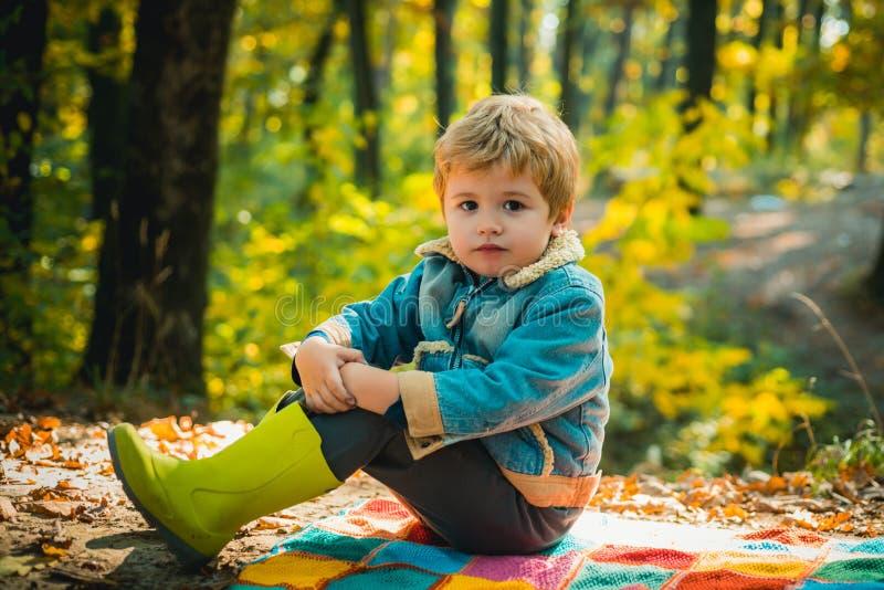 De herfstdroom Leuke kinderen met Autumn Leaves op de Achtergrond van de Dalingsaard De kinderen zit in het bos en de dromen stock afbeeldingen