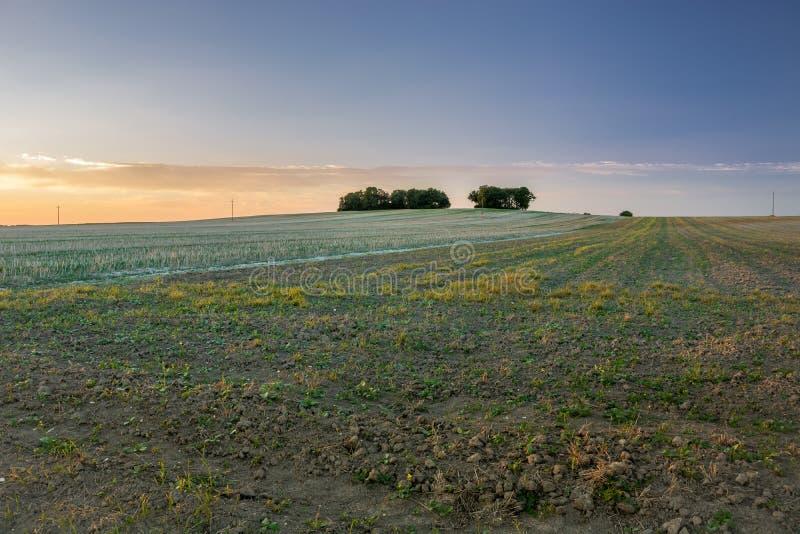 De herfstgebieden, horizon en hemel stock afbeelding