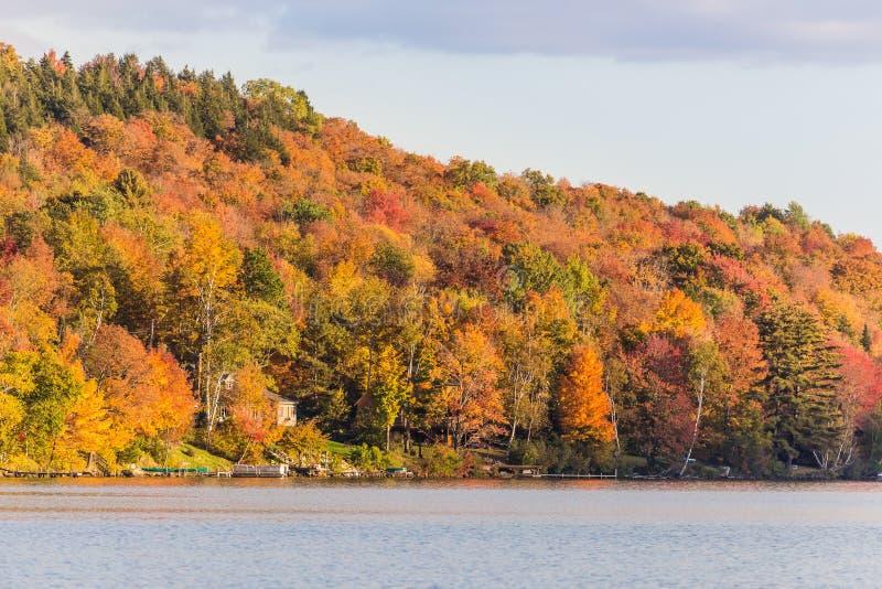 De herfstgebladerte in Elmore-het park van de staat, Vermont stock afbeeldingen