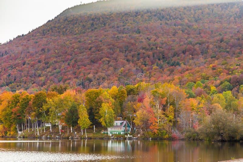 De herfstgebladerte in Elmore-het park van de staat, Vermont royalty-vrije stock foto's