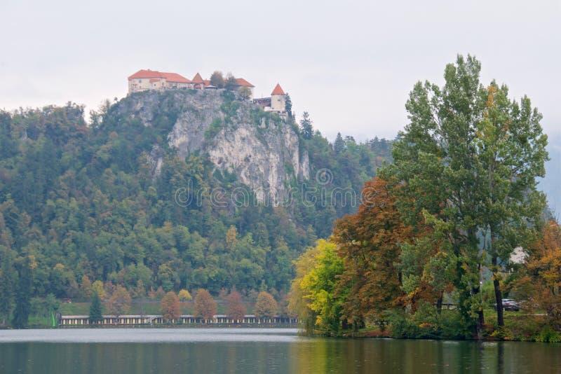De herfstgebladerte rond Afgetapt Meer met Afgetapt Kasteel op de afgrond in Slovenië royalty-vrije stock fotografie