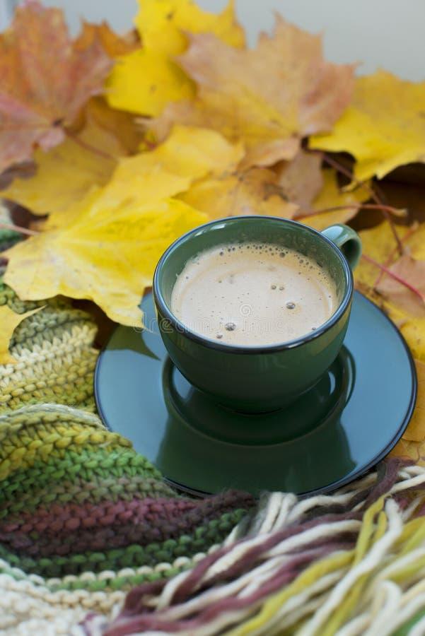 De herfstgenoegens stock foto