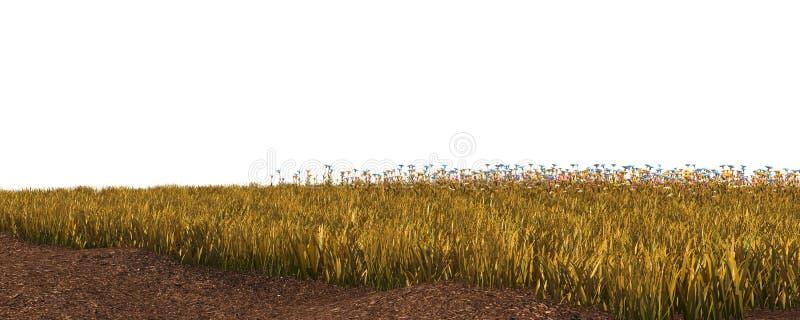 De herfstgras op witte 3D illustratie wordt geïsoleerd die als achtergrond royalty-vrije stock afbeeldingen