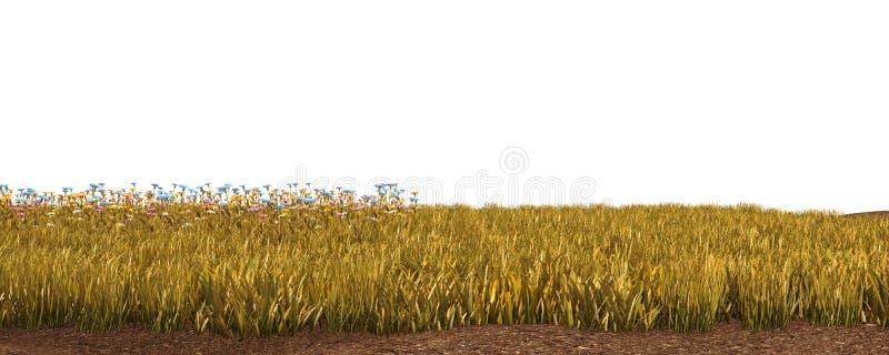 De herfstgras op witte 3D illustratie wordt geïsoleerd die als achtergrond stock foto's