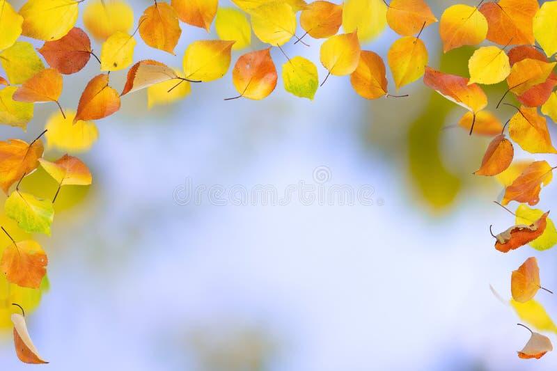 De herfstgrens stock foto