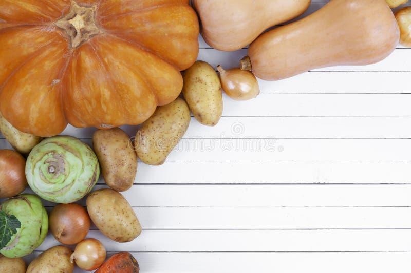 De herfstgroenten op witte houten lijstachtergrond, hoogste mening stock fotografie