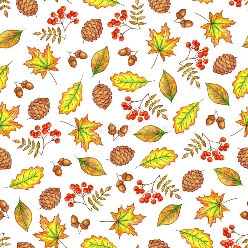 De herfsthand die op een witte achtergrond trekken stock illustratie