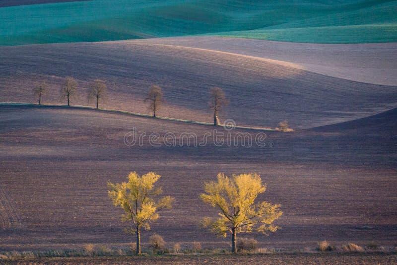 De herfstheuvels van Moravië stock afbeelding