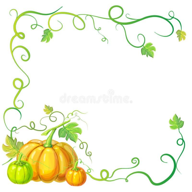 De herfstkader met pompoenen en wijnstokken, bladeren en plaats voor tekst Dankzegging, Halloween of de kaartmalplaatje van het g stock illustratie