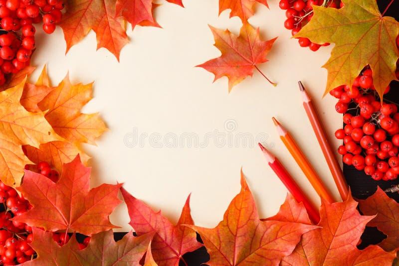 De herfstkader van dalingsbladeren, bessen en appelen met groetkaart Grote seizoentextuur met dalingsstemming stock foto's