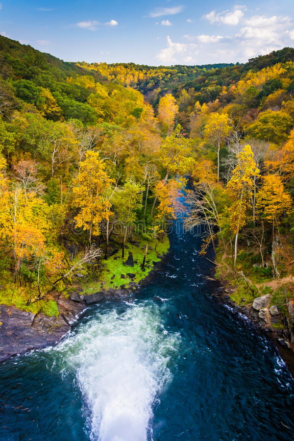 De herfstkleur langs de Buskruitrivier van Prettyboy-Dam i wordt gezien die stock foto's