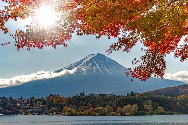 De herfstkleur van groene en gelezen esdoornbladeren en sterk licht van de zon op voorgrond met Berg Fuji royalty-vrije stock afbeeldingen