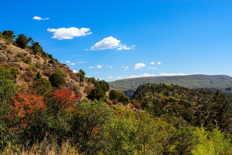 De herfstkleuren en blauwe hemel bij Zwarte Canion van het Nationale Park van Gunnison royalty-vrije stock foto's