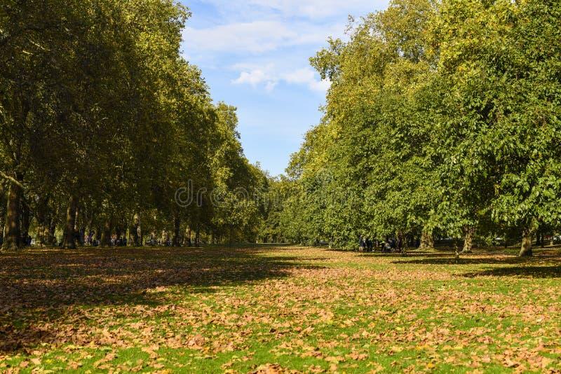 De herfstkleuren in Hyde Park, Londen, het UK stock foto's
