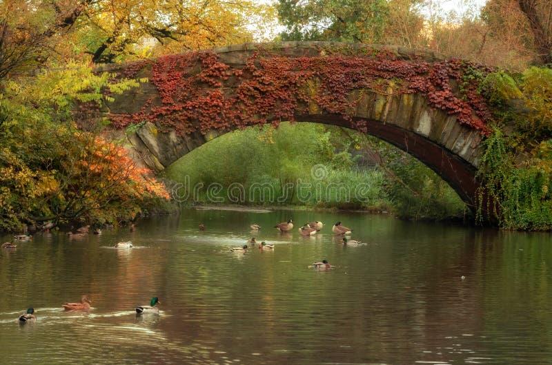 De herfstlandschap in Central Park Gapstowbrug de Stad in van uit het stadscentrum Manhattan, New York De V.S. stock foto's