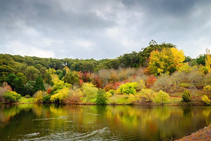 De herfstlandschap door de vijver stock afbeeldingen