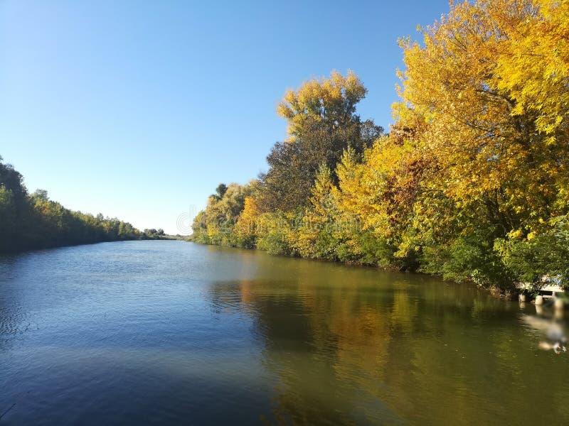 De herfstlandschap in geelgroene tonen stock afbeelding