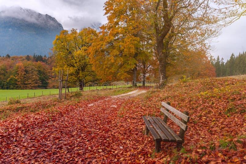 De herfstlandschap met eenzame bank royalty-vrije stock foto's