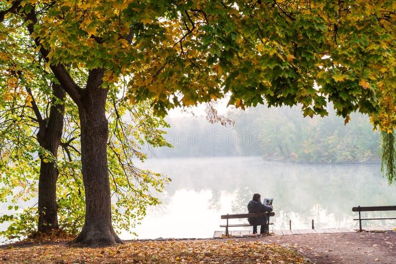 De herfstlandschap met mistig meer stock afbeelding