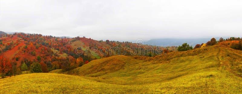 De herfstlandschap met toneel kleurrijke mening van weiden en bomen royalty-vrije stock afbeeldingen