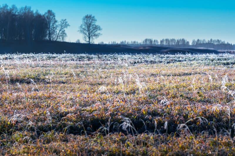 De herfstlandschap met vorst stock foto