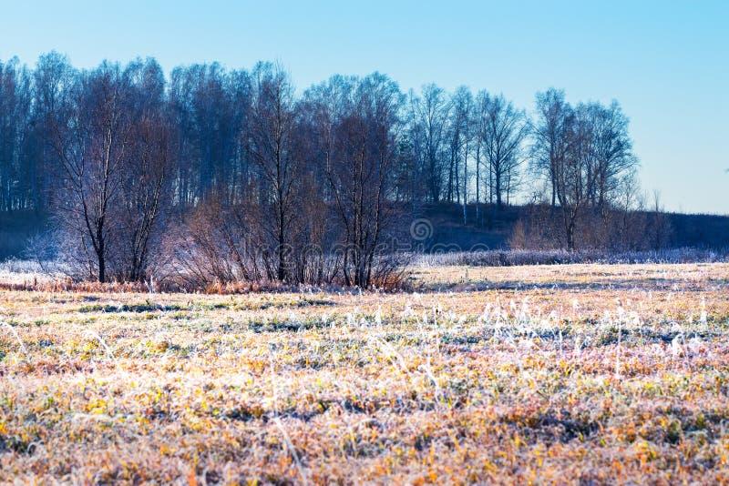 De herfstlandschap met vorst stock afbeelding