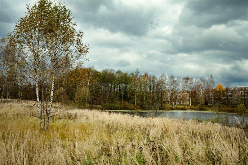 De herfstlandschap met zware hemel royalty-vrije stock foto