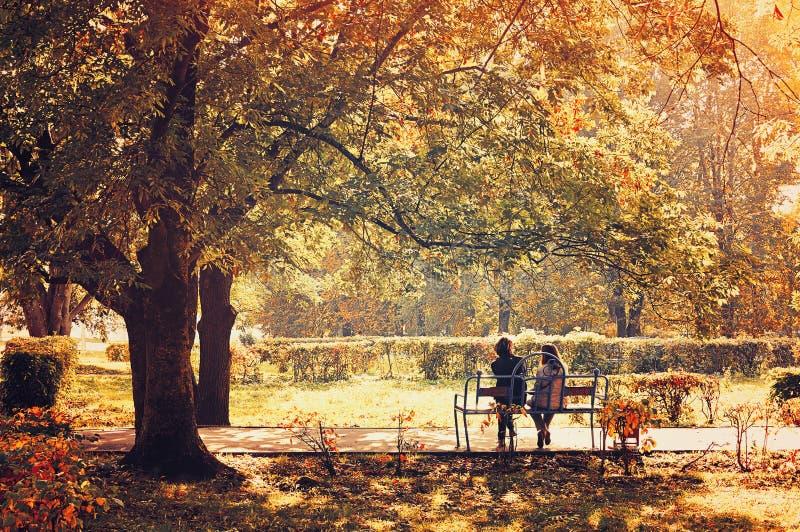 De herfstlandschap - mooi stadspark in zonnig weer royalty-vrije stock fotografie