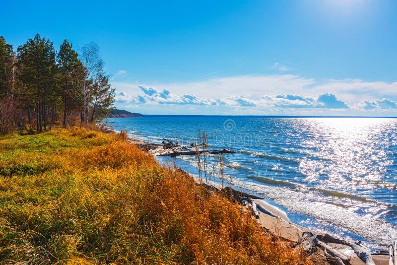 De herfstlandschap op de rivier De Ob-Rivier, Siberië, Rusland royalty-vrije stock foto