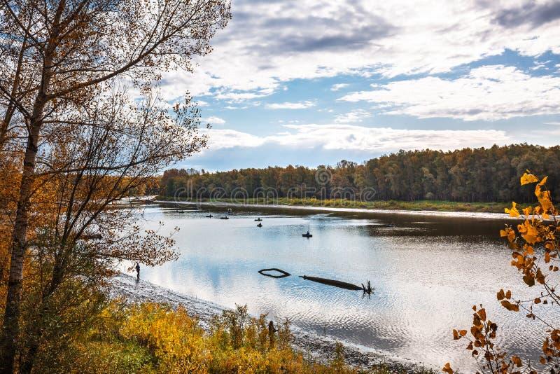 De herfstlandschap op de rivier Regi van westelijk Siberië, Novosibirsk stock foto