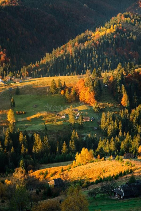 De herfstlandschap van bosheuvels en bergen op zonsondergang ontruim royalty-vrije stock foto