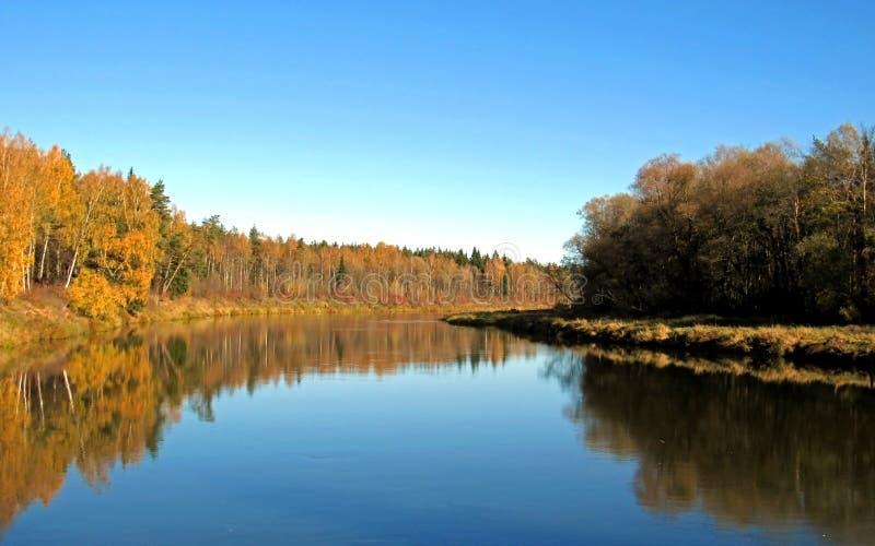 De herfstlandschap van Gauja-riviervallei en kleurrijke bosbezinning in spiegelwater stock afbeeldingen