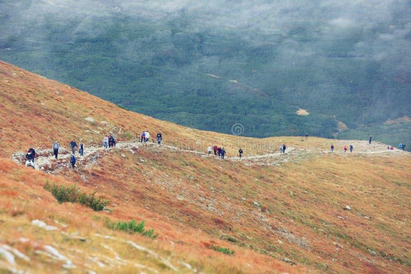 De herfstlandschap van mistige bergen royalty-vrije stock fotografie