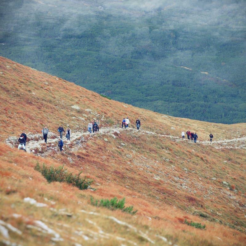 De herfstlandschap van mistige bergen royalty-vrije stock foto's
