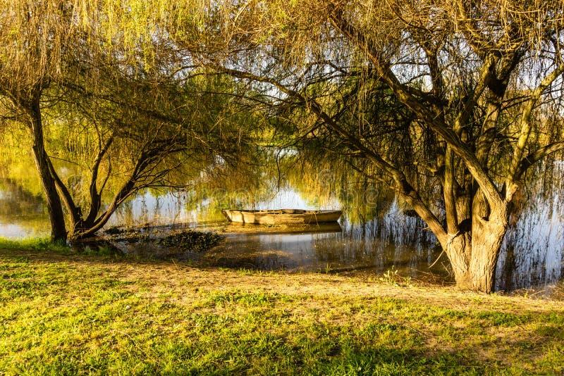 De herfstlandschap van stadspark met gouden bomen riviersorraia en boot royalty-vrije stock foto's