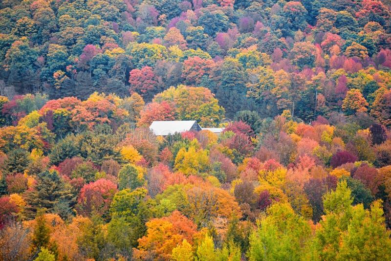 De herfstlandschap in Vermont royalty-vrije stock afbeelding