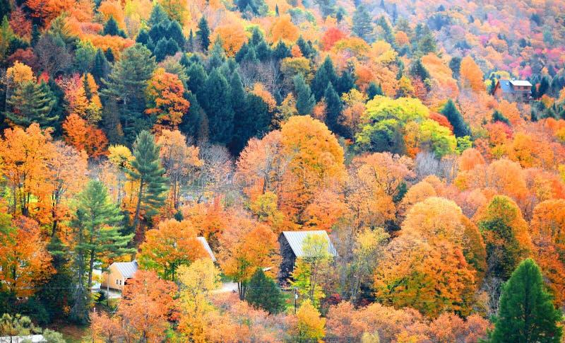 De herfstlandschap in Vermont royalty-vrije stock afbeeldingen