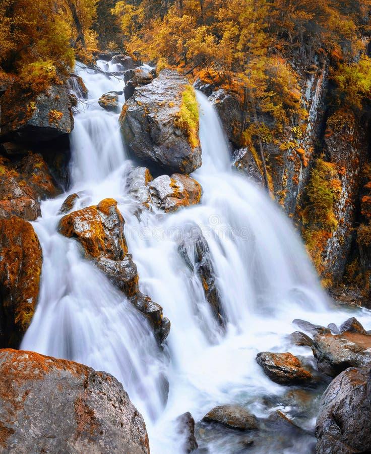 De herfstmening van een waterval in de bergen van Altai stock foto