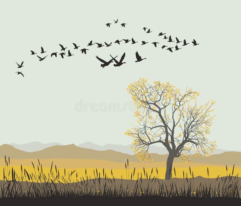 De herfstmigratie van wilde ganzen royalty-vrije illustratie